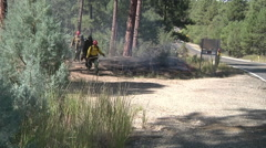 Fire crew conducting prescribed burn Stock Footage