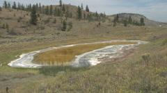 nature, alkaline pond, Saltwort Pond - stock footage