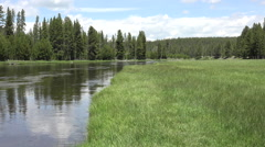Firehole River shore forest grass meadow Yellowstone HD Stock Footage