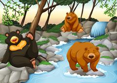 Three bears living by the waterfall - stock illustration
