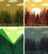 Four scenes of pine forests - stock illustration