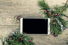 Christmas fir tree with cones Stock Photos