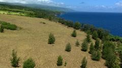 Flight from inland to ocean near Hawaiian coast Stock Footage