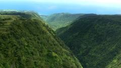 Descending flight through deep canyon in Hawaii Stock Footage
