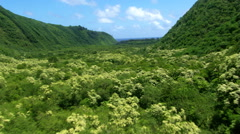 Low, fast flight over Pololu Valley in Hawaii Stock Footage