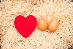 Love cradle and egg with red heart and straw Stock Photos
