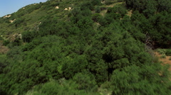 Fast flight over brushy hills. Shot in 2002. Stock Footage