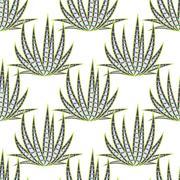 Agave succulent desert seamless pattern - stock illustration