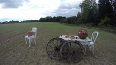 Chairs and table with apples in baskets with wheels in field, time lapse 4K Stock Footage
