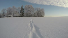 Feet tracks on midwinter snow on sunny day, time lapse 4K Stock Footage