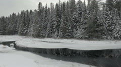 Trucking shot of a Ontario wilderness park in winter Stock Footage