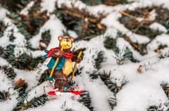 Bear on skis, snowy pine tree decorated for xmas Christmas toy on branch - stock photo