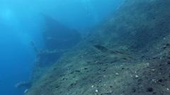 USAT Liberty wreck, Tulamben, Bali Stock Footage