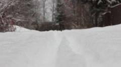 transfer focus from the ski track to the background snowy forest, it snows - stock footage