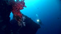 Diver on USAT Liberty wreck, Tulamben, Bali Stock Footage