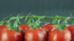 Fresh tomatoes for which the water falls.Shooted with a slider Stock Footage