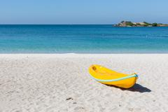Canoes on the beach - stock photo