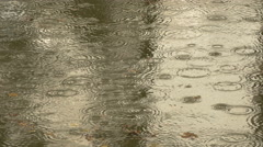 View of raindrops in the water at Schonbrunn Zoo Stock Footage
