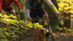 mountainbikers cycling uphill in scenic forest - stock footage