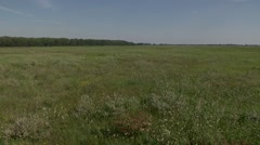LANDSCAPE PAN OF HUNGARIAN PUSZTA  Stock Footage