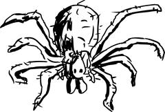 Hobo Spider Outline - stock illustration