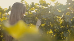 Lovely girl in the vineyard Stock Footage