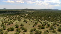 Flight toward low hills beyond miles of Arizona pine and scrub forest Stock Footage