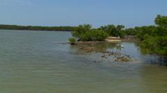 Flight over Florida coastal sandbars, along beach, and over seaside trees Stock Footage