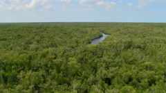Flight along a tree-lined Florida river - stock footage