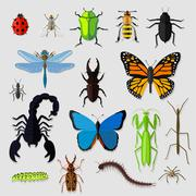 Set of Various Insects Design Flat - stock illustration