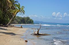 Wild Caribbean coast in Costa Rica Chiquita beach Kuvituskuvat