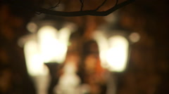 A cluster of three outdoor lamps among brown oak leaves coming into focus - stock footage