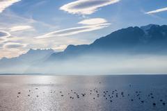 View on Alps and Geneva lake - stock photo