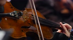 Close up  of a Violin  in a concert Stock Footage