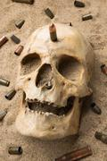 skull lying in the sand, scattered rifle and pistol cartridges. concept of war - stock photo