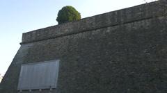 Stone wall and a tree on Viale Della Rimembranza, Trieste Stock Footage