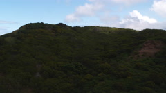 Over tree-covered hillsides to grassy cliff top and ocean view, Hawaii. Shot in Stock Footage