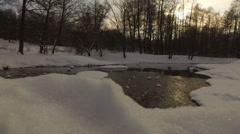 Snowy winter park Kuzminki Russia Stock Footage