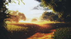 Amazing Natural Wonderland in the Sunset Sunrise with Fireflies 8 - stock footage