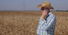 Successful Farmer Countryside Farmland Owner Phone Talk Wheat Crop Harvest Stock Footage