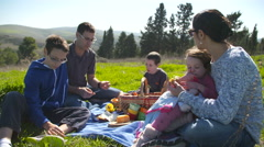 A family with four children having a picnic in nature Stock Footage