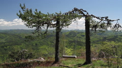 Swinging swing on top of a hill tied on a pine tree. A time to relax and enjoy Stock Footage