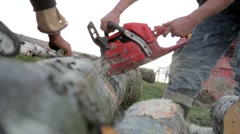 Man operates a chainsaw which cut the branches of a tree in the forest Stock Footage