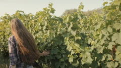 Happy girl touches the vine Stock Footage