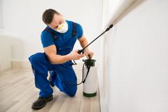Male worker spraying pesticide on window corner at home Stock Photos