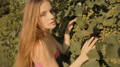 Attractive girl looking for grapes in the vineyard Stock Footage