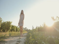 Lovely girl in a light airy dress posing in the vineyards Stock Footage