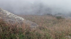 Flowing Fog in Mountains. Full HD 1920x1080 Video Clip - stock footage