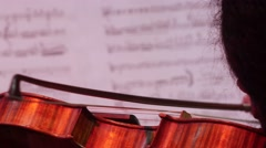 Violin Strings  in close up Stock Footage