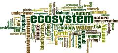 Ecosystem word cloud Stock Illustration